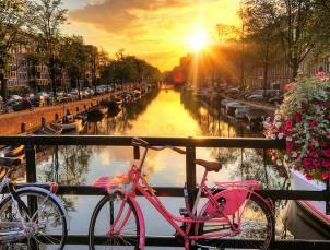 Inspiration deco fleurs velos amsterdam